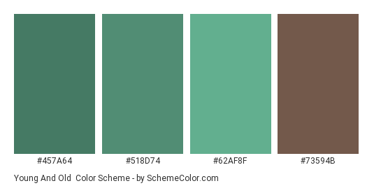 Young and Old - Color scheme palette thumbnail - #457a64 #518d74 #62af8f #73594b
