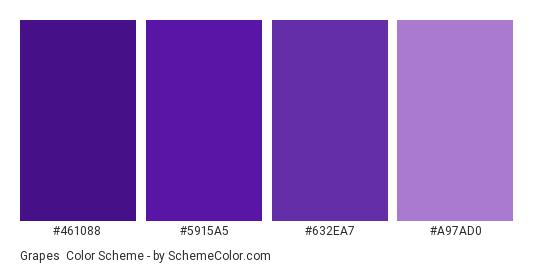 Grapes - Color scheme palette thumbnail - #461088 #5915A5 #632EA7 #A97AD0