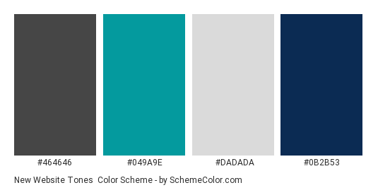 New Website Tones - Color scheme palette thumbnail - #464646 #049A9E #DADADA #0B2B53