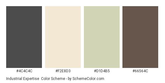 Industrial Expertise - Color scheme palette thumbnail - #4C4C4C #F2E8D3 #D1D4B5 #66564C