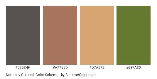 Naturally Colored - Color scheme palette thumbnail - #57534f #a7755d #d7a572 #637a30