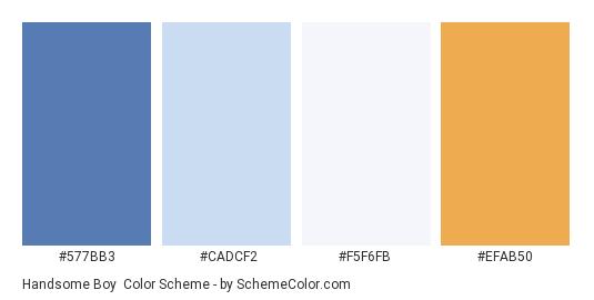 Handsome Boy - Color scheme palette thumbnail - #577BB3 #CADCF2 #F5F6FB #EFAB50