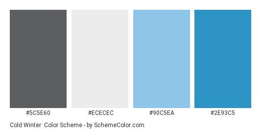 Cold Winter - Color scheme palette thumbnail - #5C5E60 #ECECEC #90C5EA #2E93C5