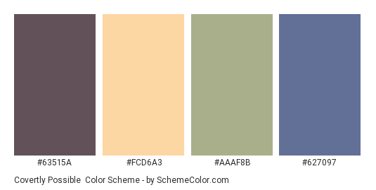 Covertly Possible - Color scheme palette thumbnail - #63515A #FCD6A3 #AAAF8B #627097