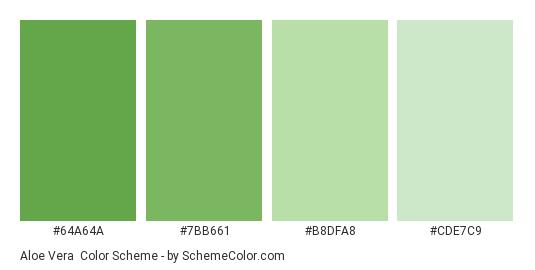 Aloe Vera - Color scheme palette thumbnail - #64A64A #7BB661 #B8DFA8 #CDE7C9