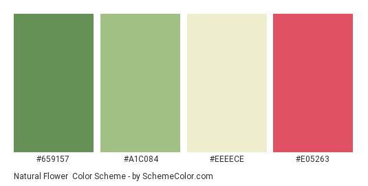 Natural Flower - Color scheme palette thumbnail - #659157 #A1C084 #EEEECE #E05263