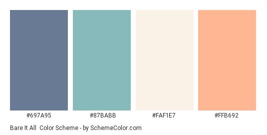 Bare it All - Color scheme palette thumbnail - #697A95 #87BABB #FAF1E7 #FFB692
