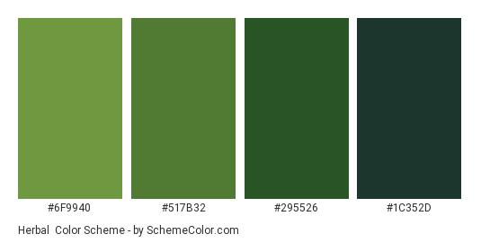 Herbal - Color scheme palette thumbnail - #6F9940 #517B32 #295526 #1C352D