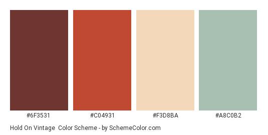 Hold On Vintage - Color scheme palette thumbnail - #6f3531 #c04931 #f3d8ba #a8c0b2