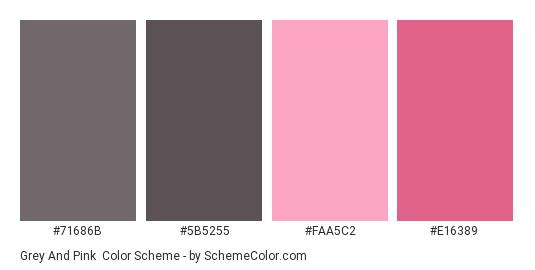 Grey and Pink - Color scheme palette thumbnail - #71686B #5B5255 #FAA5C2 #E16389