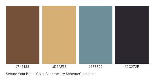 Secure Your Brain - Color scheme palette thumbnail - #745138 #D5AF73 #6E8E99 #2C272E