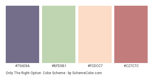 Only the Right Option - Color scheme palette thumbnail - #756E8A #BFD5B1 #FCDCC7 #C27C7C