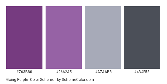 Going Purple - Color scheme palette thumbnail - #763B80 #9662A5 #A7AAB8 #4B4F58
