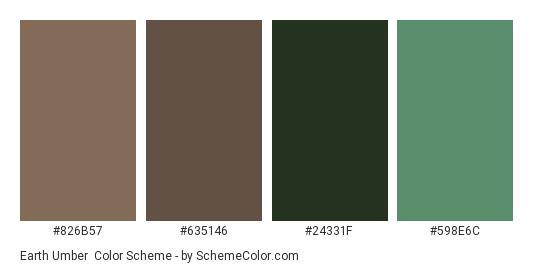 Earth Umber - Color scheme palette thumbnail - #826B57 #635146 #24331F #598E6C