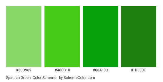 Spinach Green - Color scheme palette thumbnail - #88D969 #46CB18 #06A10B #1D800E