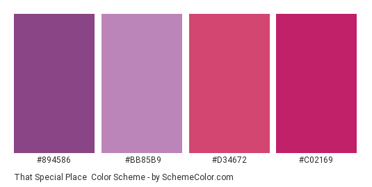 That Special Place - Color scheme palette thumbnail - #894586 #bb85b9 #d34672 #c02169