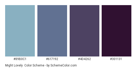 Might Lovely - Color scheme palette thumbnail - #89b0c1 #617192 #4d4262 #301131