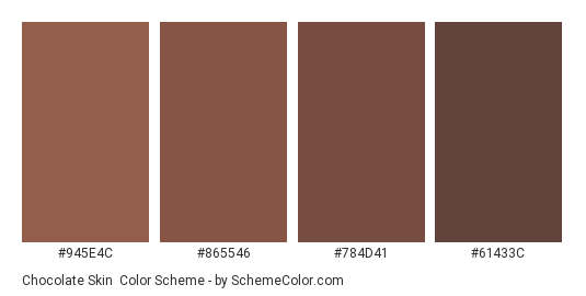Chocolate Skin - Color scheme palette thumbnail - #945E4C #865546 #784D41 #61433C