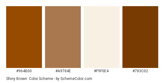Shiny Brown - Color scheme palette thumbnail - #964b00 #a9784e #f9f0e4 #783c02