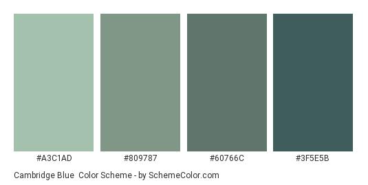 Cambridge Blue - Color scheme palette thumbnail - #A3C1AD #809787 #60766C #3F5E5B