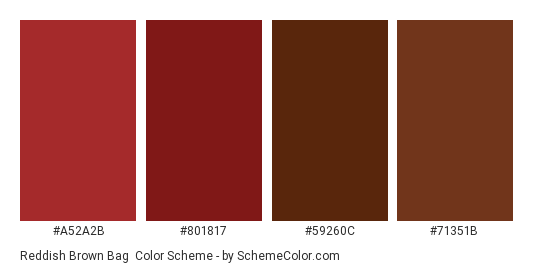 Reddish Brown Bag - Color scheme palette thumbnail - #A52A2B #801817 #59260C #71351B