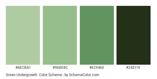 Green Undergrowth - Color scheme palette thumbnail - #AECBA1 #96be8c #629460 #243119