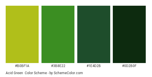 Acid Green - Color scheme palette thumbnail - #B0BF1A #3B8E22 #1E4D2B #0D2B0F