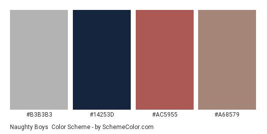 Naughty Boys - Color scheme palette thumbnail - #B3B3B3 #14253D #AC5955 #A68579