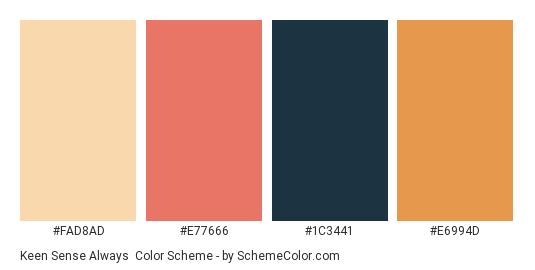 Keen Sense Always - Color scheme palette thumbnail - #FAD8AD #E77666 #1C3441 #E6994D