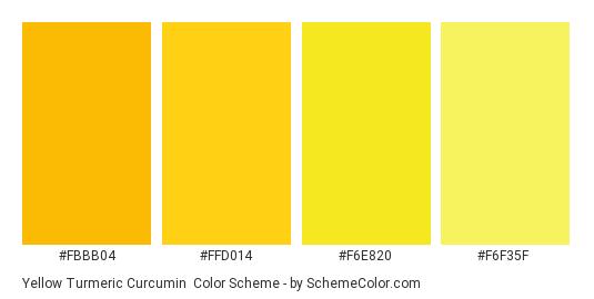 Yellow Turmeric Curcumin - Color scheme palette thumbnail - #FBBB04 #FFD014 #F6E820 #F6F35F