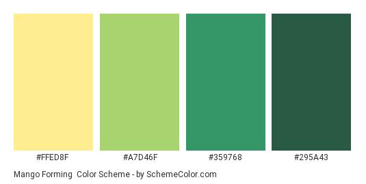 Mango Forming - Color scheme palette thumbnail - #FFED8F #A7D46F #359768 #295a43