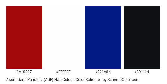 Asom Gana Parishad (AGP) Flag Colors - Color scheme palette thumbnail - #a10807 #fefefe #021a84 #0d1114