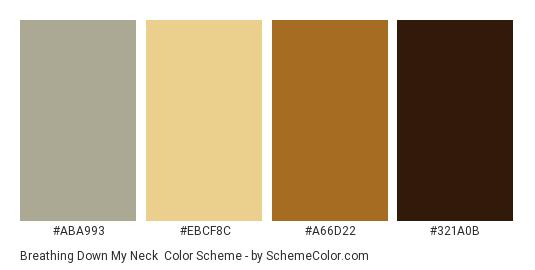 Breathing Down my Neck - Color scheme palette thumbnail - #aba993 #ebcf8c #a66d22 #321a0b