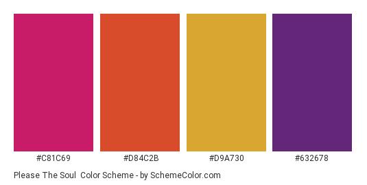 Please the Soul - Color scheme palette thumbnail - #c81c69 #d84c2b #d9a730 #632678