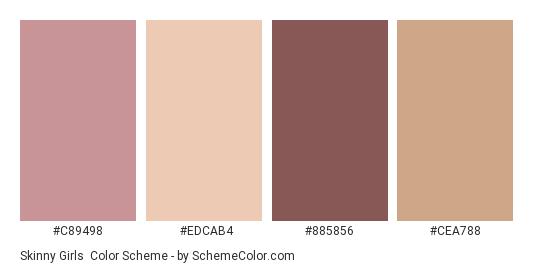 Skinny Girls - Color scheme palette thumbnail - #c89498 #edcab4 #885856 #cea788