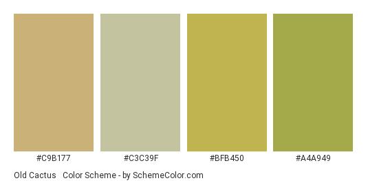 Old Cactus & Tequila - Color scheme palette thumbnail - #c9b177 #c3c39f #bfb450 #a4a949