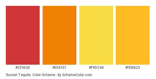 Sunset Tequila - Color scheme palette thumbnail - #cf3638 #ee8101 #f9dc44 #febb23