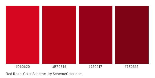 Red Rose - Color scheme palette thumbnail - #d60620 #b70316 #950217 #7e0315