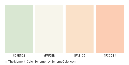 In The Moment - Color scheme palette thumbnail - #d9e7d2 #f7f5eb #fae1c9 #fccdb4