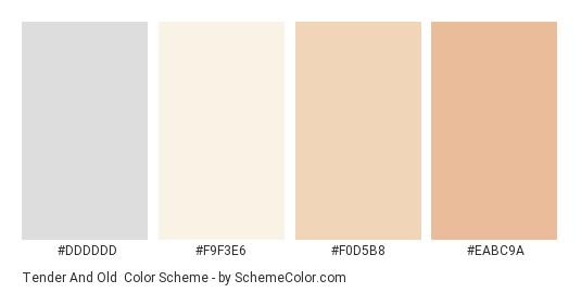 Tender and Old - Color scheme palette thumbnail - #dddddd #f9f3e6 #f0d5b8 #eabc9a