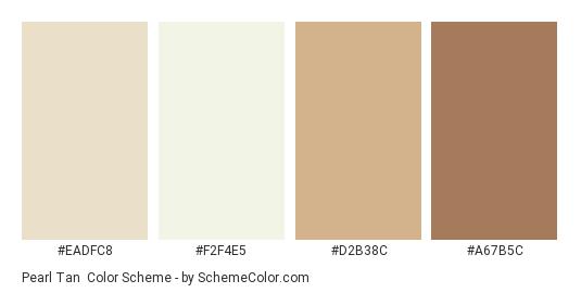 Pearl Tan - Color scheme palette thumbnail - #eadfc8 #f2f4e5 #d2b38c #a67b5c
