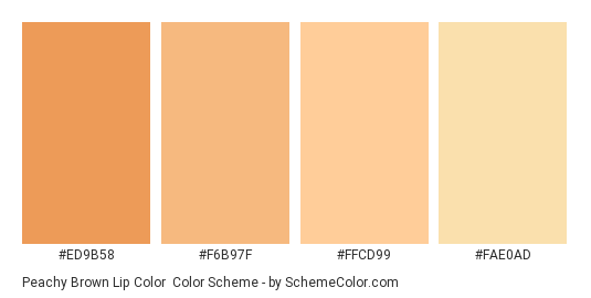 Peachy Brown Lip Color - Color scheme palette thumbnail - #ed9b58 #f6b97f #ffcd99 #fae0ad