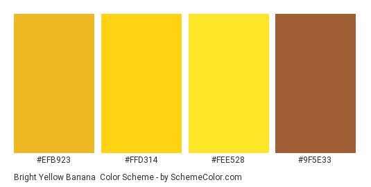 Bright Yellow Banana - Color scheme palette thumbnail - #efb923 #ffd314 #fee528 #9f5e33