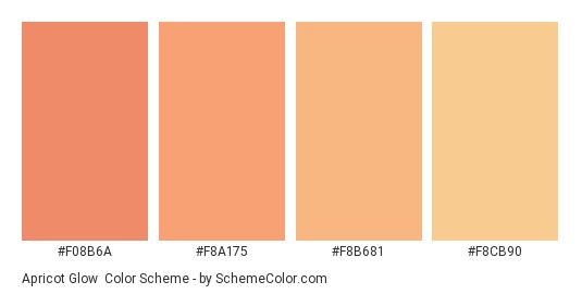 Apricot Glow - Color scheme palette thumbnail -  f08b6a  f8a175  f8b681   f8cb90 0d0cf6a2ec