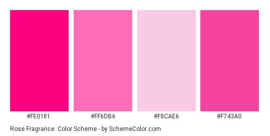 Rose Fragrance - Color scheme palette thumbnail - #fe0181 #ff6db6 #f8cae6 #f743a0