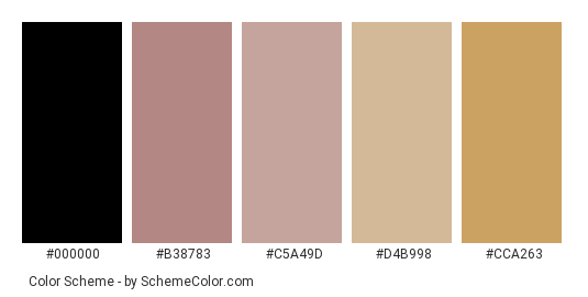 Beauty in the Dark - Color scheme palette thumbnail - #2b2b29 #b38783 #c5a49d #d4b998 #cca263