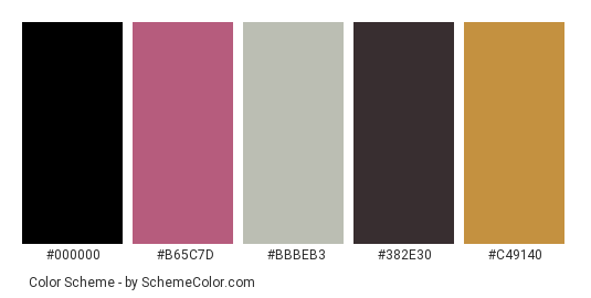 Apple Fall - Color scheme palette thumbnail - #942b4a #b65c7d #bbbeb3 #382e30 #c49140