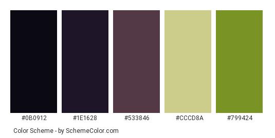 Eggplant Purple Color Scheme Palette Thumbnail 0b0912 1e1628 533846 Cccd8a