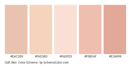 Creative of human skin tone vector image on | Colors for