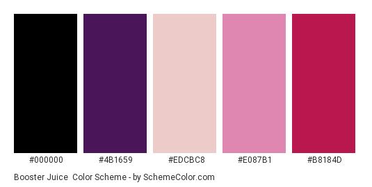 Booster Juice - Color scheme palette thumbnail - #000000 #4b1659 #edcbc8 #e087b1 #b8184d